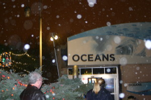 Christmas at the Indianapolis Zoo: The Oceans Building at the Indianapolis Zoo