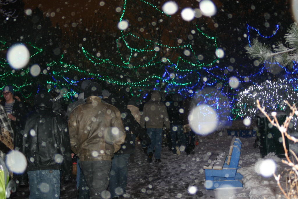Snow and Lights during Christmas at the Indianapolis Zoo