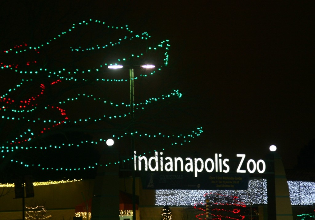 Christmas at the Indianapolis Zoo