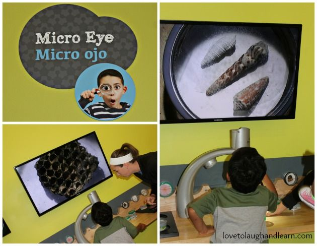 Micro Eye at the Thinkery
